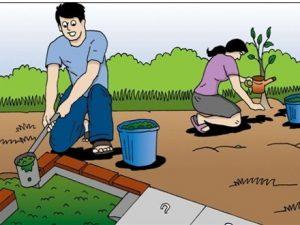 Limbah Biogas unt Pupuk Organik